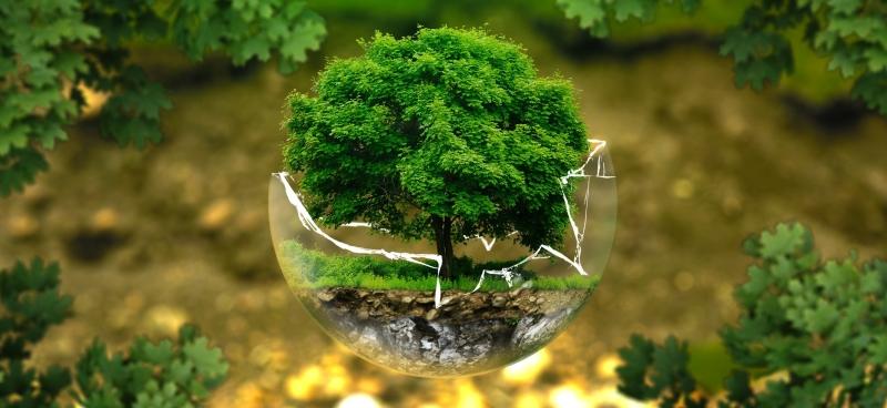 环境产品申明EPD认证